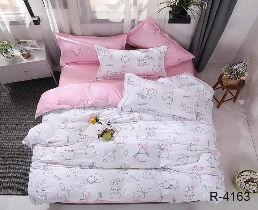 Комплект постельного белья с компаньоном ТМ TAG R4163