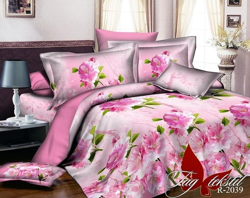 Комплект постельного белья ТМ TAG R2039